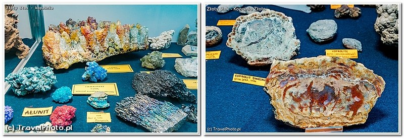 Złoty Stok, Kopalnia Złota - wystawa minerałów. Na zdjęciu z prawej skamieniała... kupa dinozaura!
