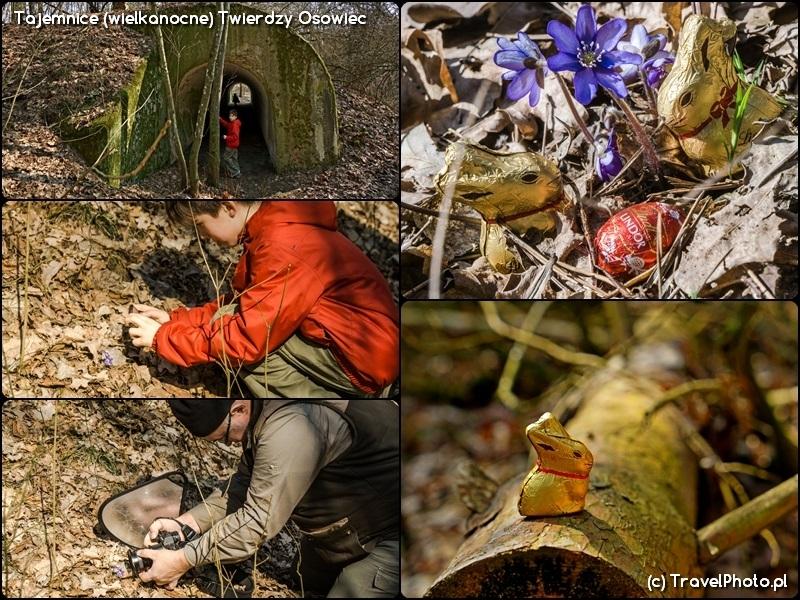 Twierdza Osowiec - wielkanocne znaleziska na ścieżce przyrodniczej