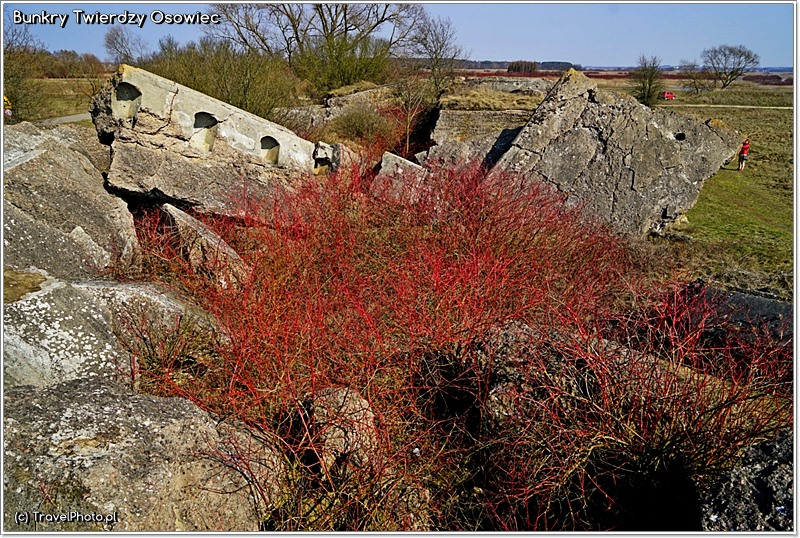 Twierdza Osowiec - bunkry