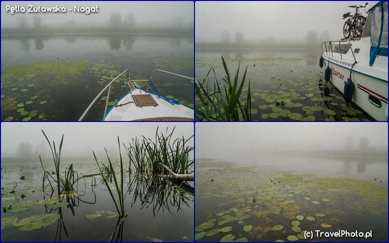 Pętla Żuławska - Nogat w porannej mgle