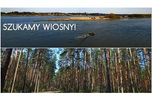 Puszcza Kampinoska i okolice – szukamy wiosny!