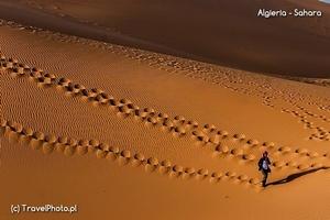 Algieria – wyprawa niezwykła na Saharę i tuareski festiwal Sebeiba
