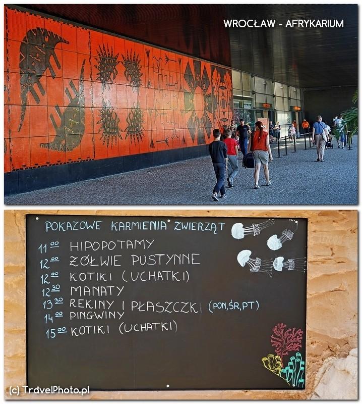 Wrocław, AFRYKARIUM - wejście i ważna tablica do zapamiętania - godziny karmienia zwierząt