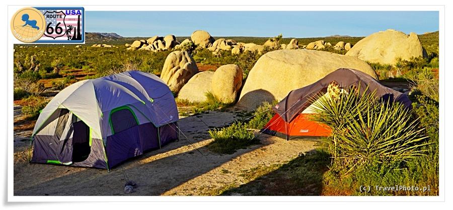 Jedno z campsite w Joshua Tree NP.