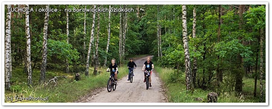 Na rowerach przez Bory Tucholskie - z Piekiełka...