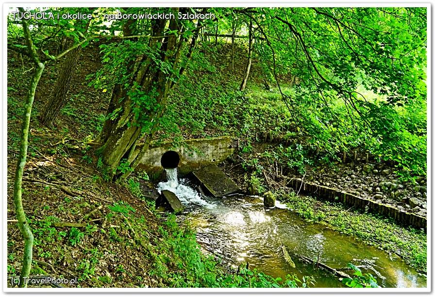 Najmniejszy z akweduktów. Mały Kanał Brdy między wsiami Klocek i Biała.
