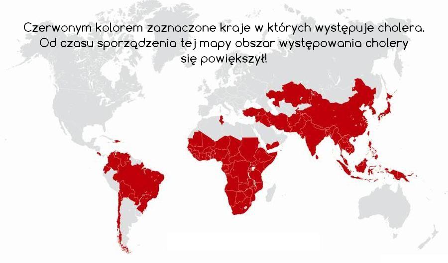 Kraje w których występuje cholera.