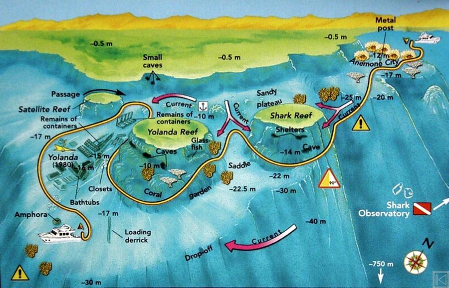 Nurkowanie w Sharm El Sheikh - Shark i Jolanda Reef