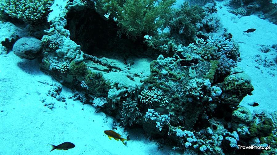 Gordon Reef - beczki